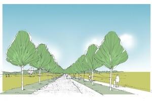 Nye træer og bredere allé til Moesgaard