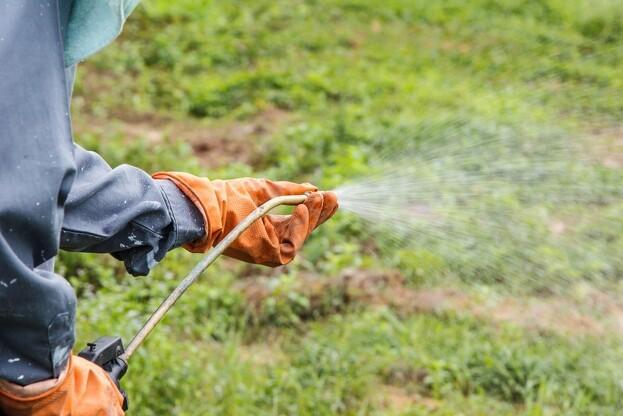 LMO udbyder nu kursus i sprøjteteknik for hånd- og rygsprøjter. Foto: Colourbox.