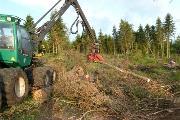 Skoventreprenørerne udfordres af mere bureaukrati