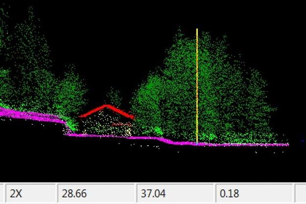 GIS sikrer systematisk drift af gadetræer