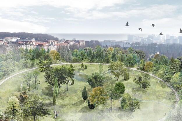 Første træ plantet til ny skovkirkegård i Aarhus