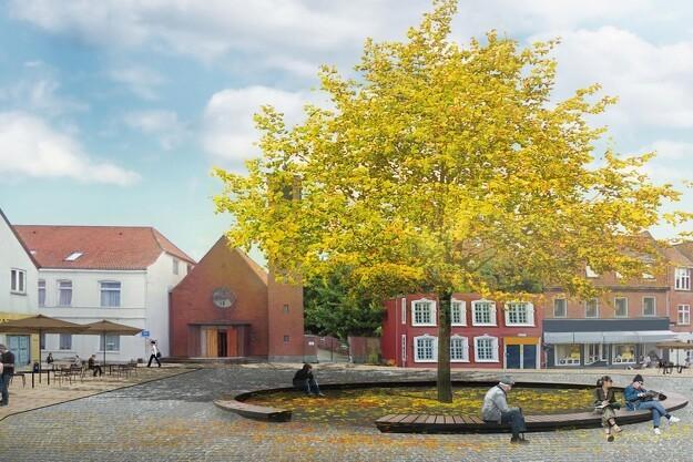 Aabenraa planter stort egetræ i midtbyen