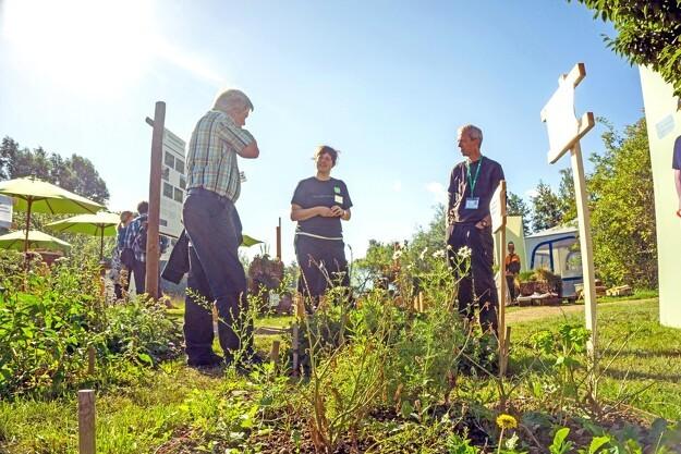 Forskere i dialog med grøn sektor