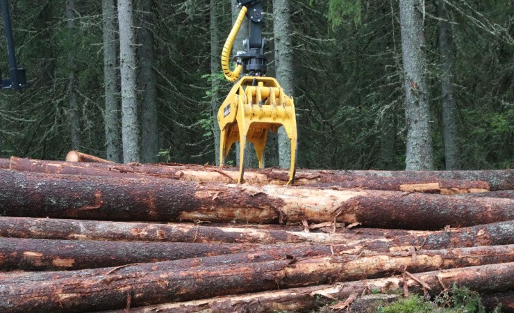 Skovene leverer grøn gas