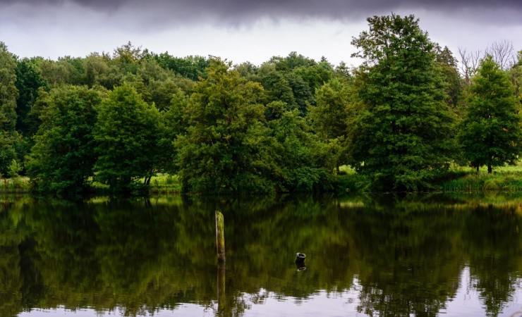 Niras regner på vandmængde i kommende fugleparadis
