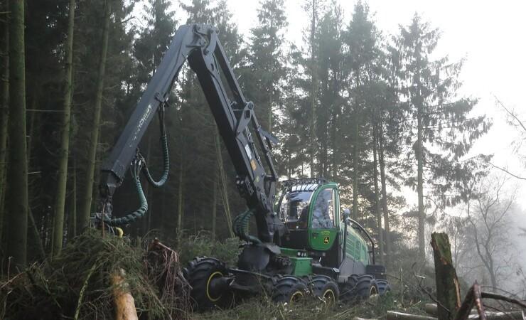 Skoventreprenører har tilgang