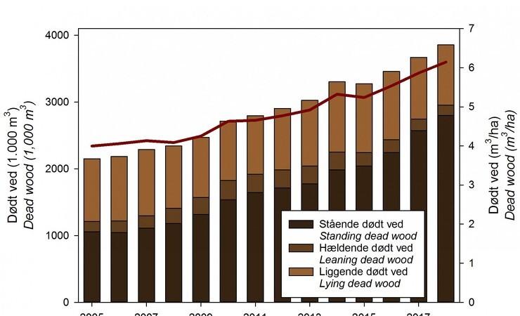 Dødt ved i skoven vokser i omfang