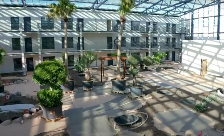 1800 planter i subtropisk seniorprojekt