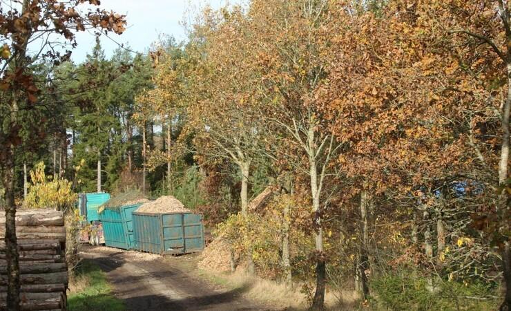 Folketinget stiller lovkrav til træbiomasse