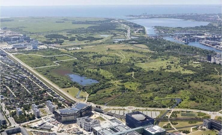 Flere fagprofessionelle prioriterer grønne byer