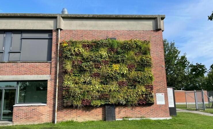 Varmepumpe kan optimere brugen af grønne plantevægge