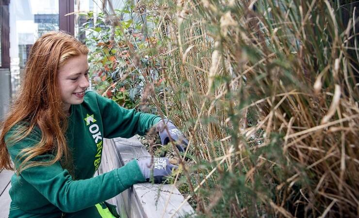 'Grønne' elever og glade anlægsgartnere