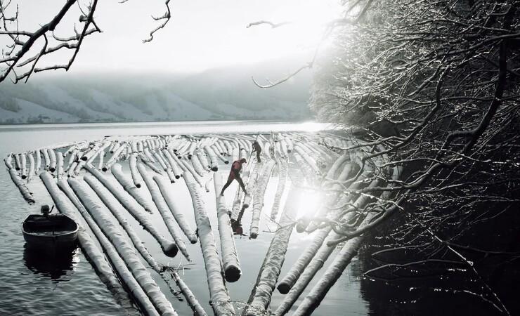 Video viser skovning på bjergside i vildt vejr