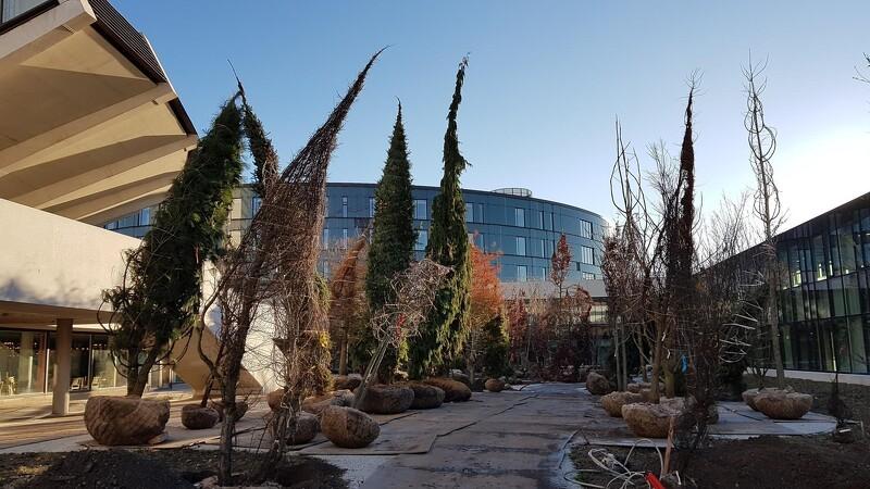 500 træer og buske skaber ny grøn oase