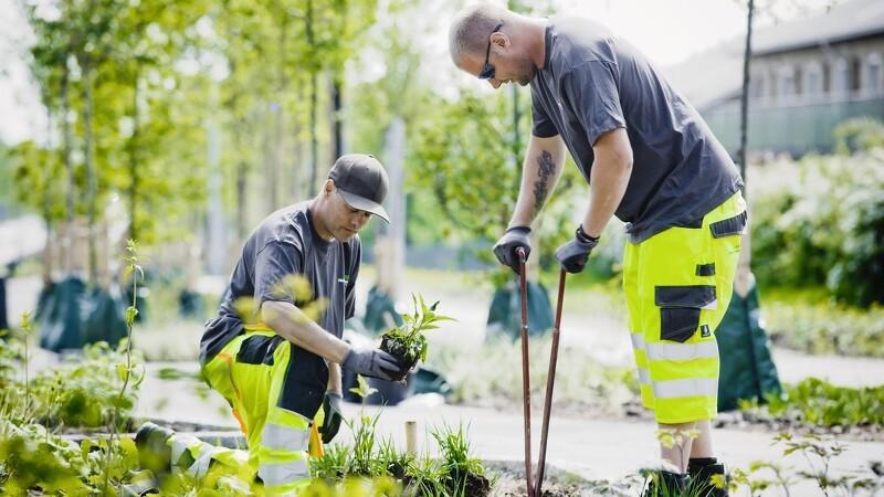 Landskabsrådet fremviser korrigeret indsats for grønne områder