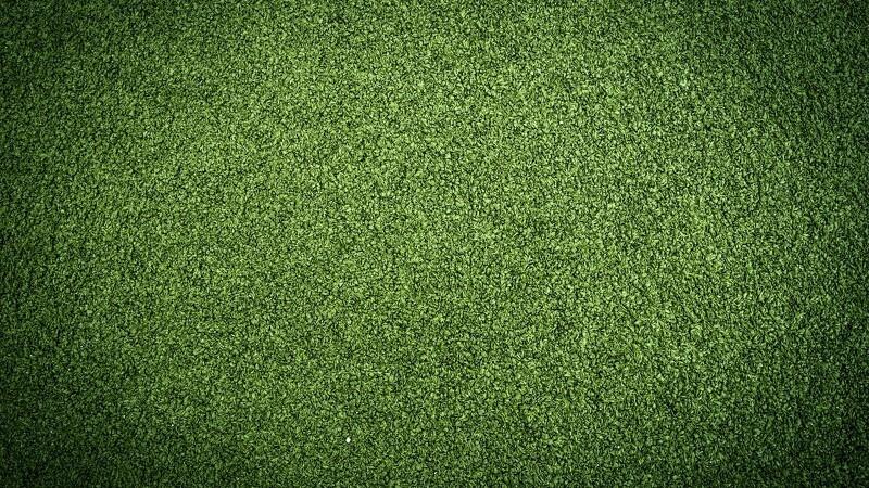 Der er gode penge i græs-farve