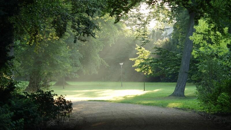 Ny park i Esbjerg vokser i omfang
