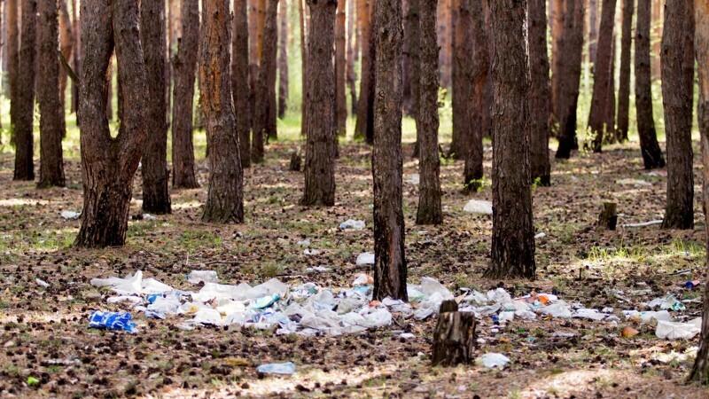 Plastik hænger på træerne