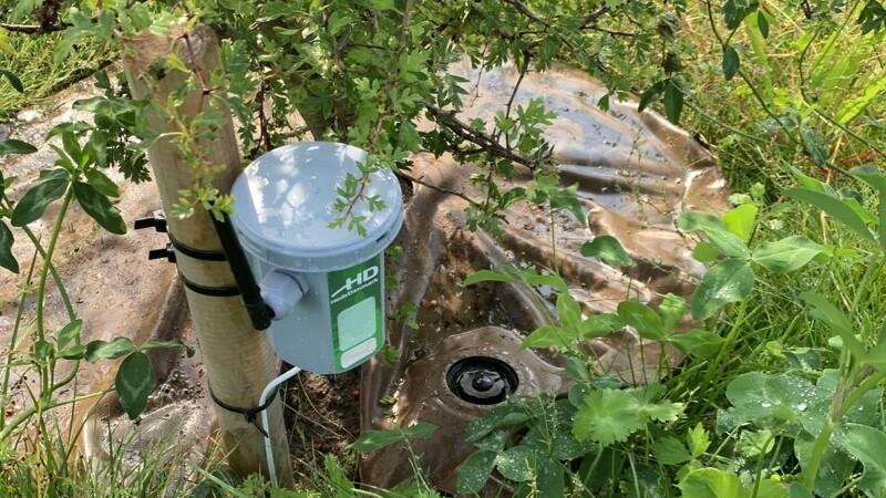 Bytræer får slukket tørsten med hjælp fra IoT