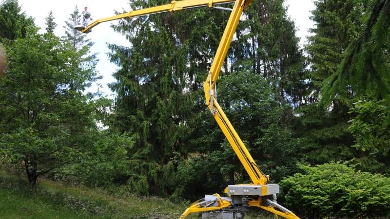 Træarbejde i højderne