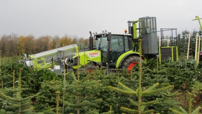 Tree Tech giver længere levetid til juletræet