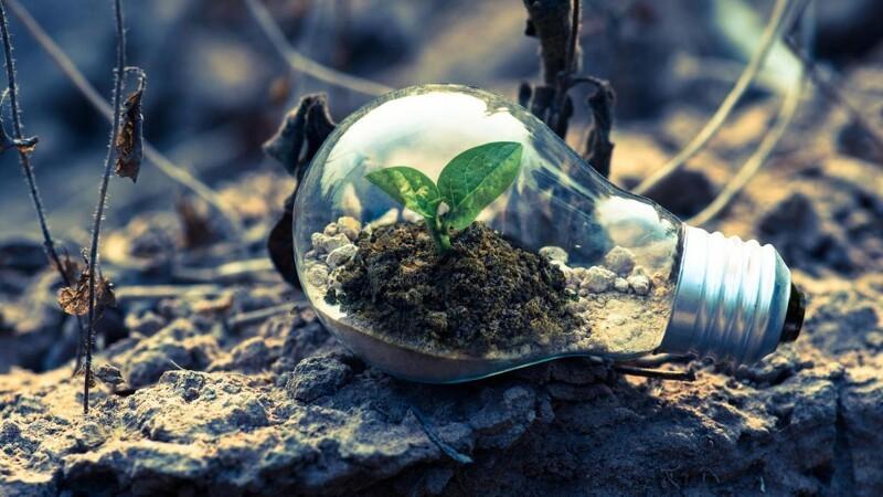 Ønsker du at leve en mere grøn livsstil? Læs med her
