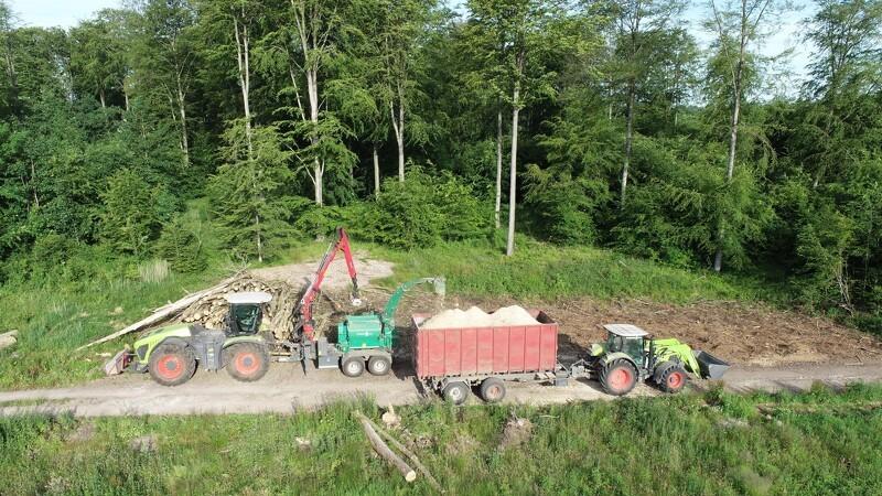 Skoventreprenør: Vi skal ikke vokse yderligere