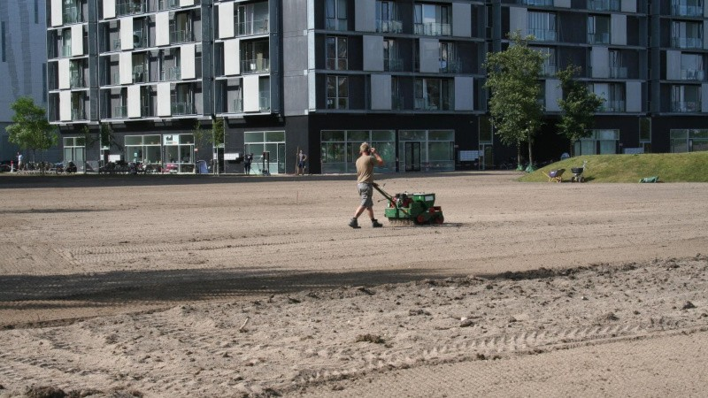 Bygherres tidsplaner udfordrer optimal græsetablering